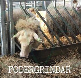 fodergrindar till får